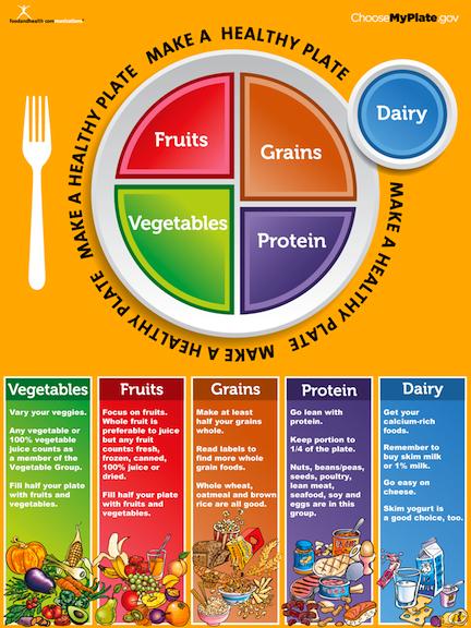 πιάτο σωστής διατροφής