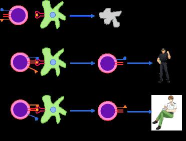 anosia-positive-selection