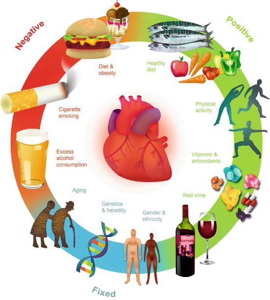 ΥΠΟΛΟΓΙΣΜΟΣ ΤΟΥ ΚΑΡΔΙΑΓΓΕΙΑΚΟΥ ΚΙΝΔΥΝΟΥ (ΓΙΑ ΕΜΦΡΑΓΜΑ ΚΑΙ ΕΓΚΕΦΑΛΙΚΟ)  Cardiovascular Risk Calculator