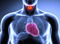 thyr-hyperthyroidism-1024x754