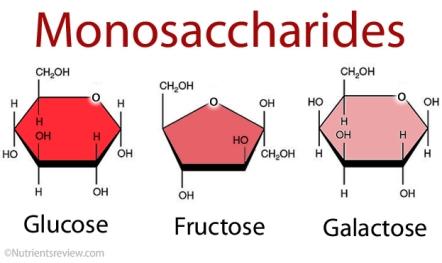 sug Monosaccharides