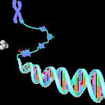 EPIG epigenetics