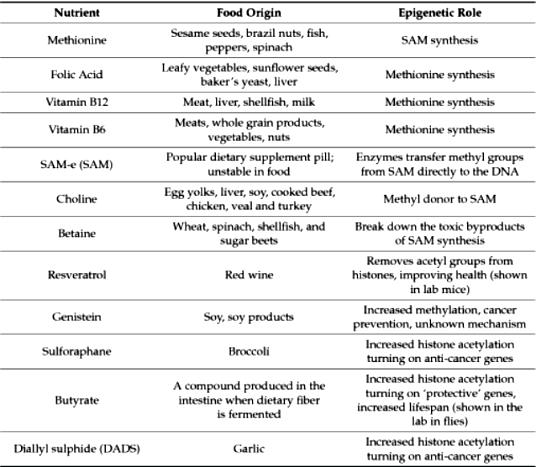 epigen ggg-cancer-6-Table1-1 (1)