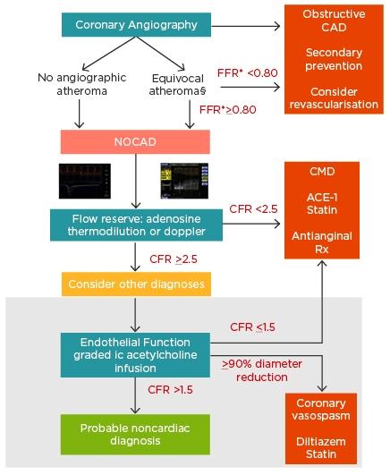 inoca Figure-1-Comprehensive-assessment-of-NOCAD...-2