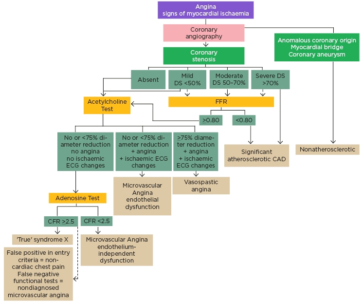 inoca Figure-2-Diagnostic-algorithm-in-patients-with-angina-symptoms...
