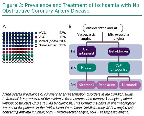 inoca figure3-prevalence-and-treatment