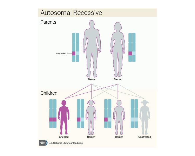 CP autosomal-recessive