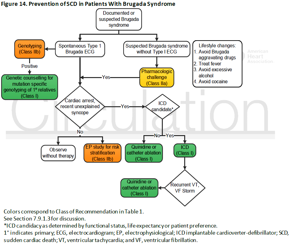 br chan-brs-Prevention-of-SCD-in-Patients-With-Brugada-Syndrome