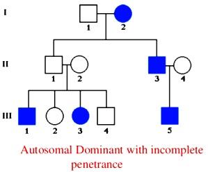cp modes-of-inheritance-15-638