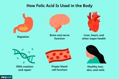 b9 vit-folic-acid-for-fibromyalgia-chronic-fatigue-syndrome-715983-01-a47803e292564d45b0ae7ec784a77e6b