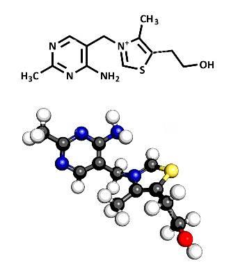 vit vitamin-b1-thiamine-molecule-three-representations-2d-skeletal-formula-DTK59P