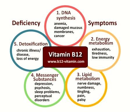 vit vitamin-b12-deficiency-symptoms