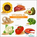 panto Vitamin_B5_Function_big_898