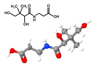 panto vitamin-b5-pantothenic-acid-molecule-with-chemical-formula-isolated-DP9FN6