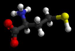 homo-180px-L-Homocysteine-3D-balls